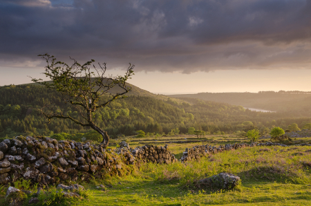 Dartmoor; National Park; Devon; photography