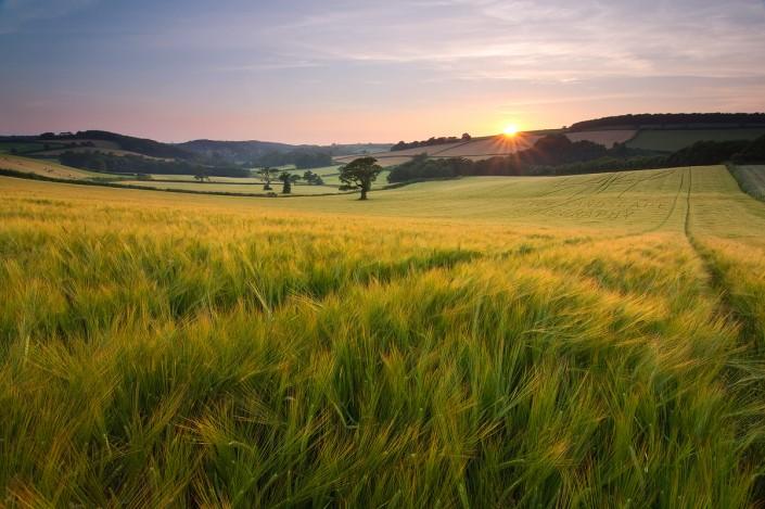south Devon; photography