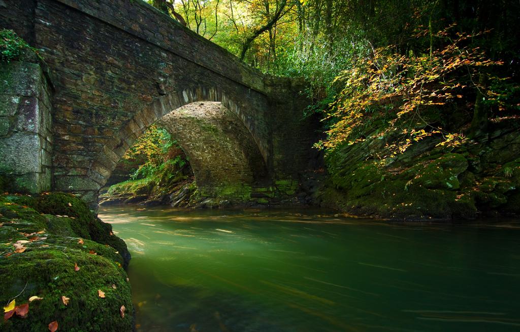 Denham bridge; Devon; river Tavy; light; autumn; south Devon; photography