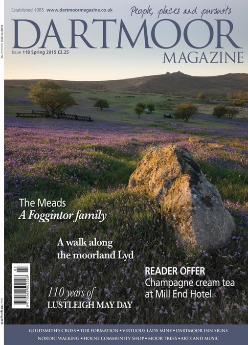 Dartmoor Magazine, Holwell lawns, bluebells; Dartmoor; National Park; Devon; photography