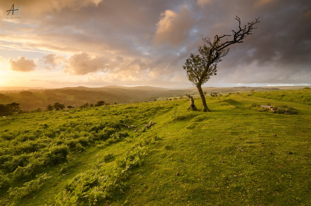 Devon And Dartmoor Landscape Photography