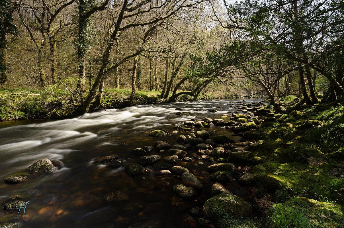 Dartmoor National Park; Devon; photography